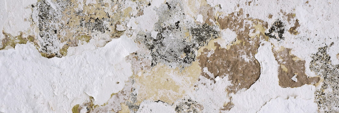 Image by Andrew Buchananan - paint flaking off a wall